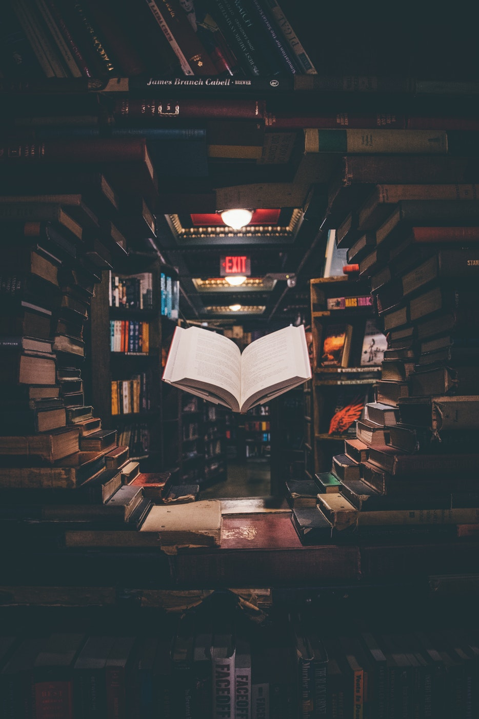 To Be Read: One Writer's Fight Against His Ridiculous Reading Ambitions (August 2018)